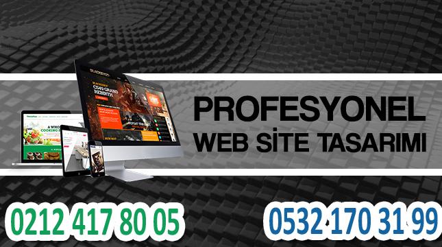 profesyonel web sitesi